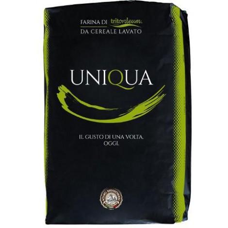 Uniqua Verde - Tritordeum