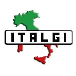 Italgi S.r.l.